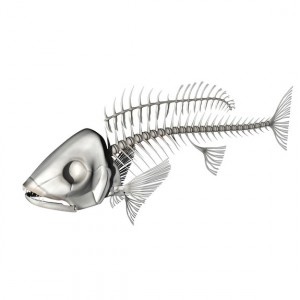 fishskeleton02
